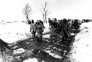 Eastern Front Collection 1178