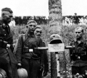 Eastern Front Collection 1324