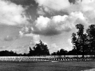 Normandy 1944 Collection 836